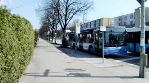 Kein Platz für ein Wartehäuschen samt Bank: Bei jedem Wetter müssen Fahrgäste, überwiegend Senioren aus dem benachbarten MünchenStift, stadteinwärts an der Haltestelle Odinpark an der Effnerstraße stehend und ungeschützt auf den 187er-Bus warten.