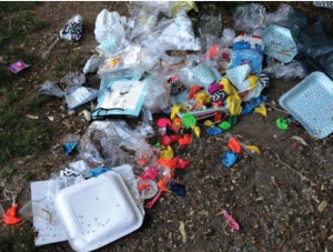 """""""Müllhalde"""" am Ökologischen Bildungszentrums (ÖBZ) an der Englschalkinger Straße."""