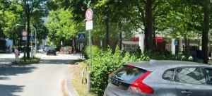 Die Übergangsinsel in der Mitte des Rosenkavalierplatzes soll samt Lampenmasten und Bäumen entfernt, auf der Seite Richtung Westin Hotel sollen fünf dünne Bäume gefällt, die Fahrbahn verschmälert und zusätzliche Senkrechtparkplätze geschaffen werden.    Foto: hgb