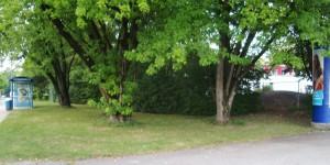 """Zaun der Kita entlang der Robert-Heger-Straße versetzen, Buschwerk entfernen, Rasen ansäen – kaum zu verstehen, warum die Spielfläche des Kindergartens an dieser Stelle so nicht vergrößert werden kann. Die Behördenargumente """"effektiver Flächengewinn, eingeschränkte Nutzbarkeit wegen Verschattung sowie Verwurzelung und für die Maßnahme nicht rechtfertigbarer wirtschaftlicher Aufwand"""" leuchten nicht ein."""