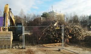 Im Zug der Altlastenentfernung mussten im künftigen Wohnquartier Prinz-Eugen-Park an der Cosimastraße viele Bäume gefällt werden.         Foto: hgb