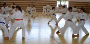Frauen und Männer üben beim Karatetraining den schnellen Wechsel zwischen Angreifer- und Verteidigerrolle.     Foto: Budokan München