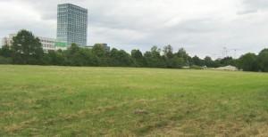 Das knapp sechs Hektar große Grundstück an der Eggenfeldener Straße – im Bildhintergrund der Tower des Süddeutschen Verlags – ist noch als Gewerbefläche ausgewiesen.     Foto: hgb
