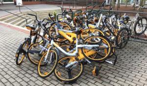 Einen Tag später waren fast alle Räder weg – sie wurden von Unbekannten beim Radständer am Rosenkavalierplatz aufgetsapelt.   Foto: hgb